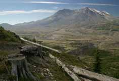 Mt St Helens Coach Tour